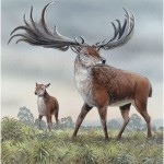 irish_giant_deer